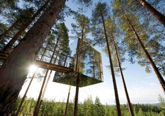 cubo_di_vetro_tra_gli_alberi